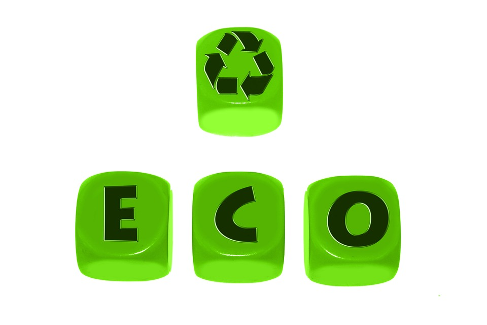 Environmental Education – Reasons To Go For